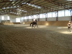 3R BIOFARM HORSE WELLNESS RANCH